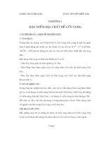 ĐỀ tài TIỀM NĂNG dầu KHÍ bể cửu LONG
