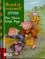 The three little pigs 1998