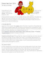 65133 chinese new year