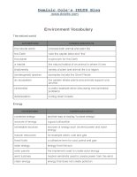 environment vocab  for leanning english