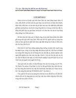 TIỂU LUẬN xây DỰNG KHU BIỆT THỰ CAO cấp RUBY LAND