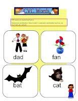 11505 cvc words flashcards 1