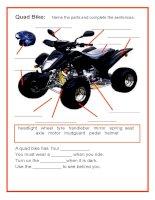 1283 quad bike