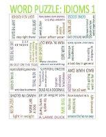 16024 puzzle idioms 1