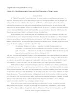 sample essay  for leanning english