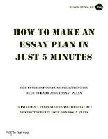 TSG essay plan template
