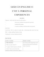 Giáo án Tiếng Anh 11 Unit 2: Personal experiences