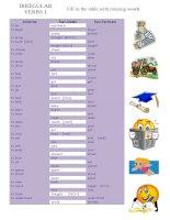 25306 irregular verbs 1