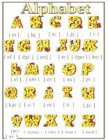 23659 alphabet poster
