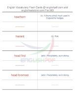 TOEFL IBT vocabulary flash cards263