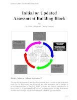 Initial or updated assessment building block