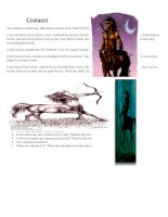 41236 centaur reading