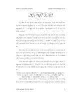 ĐỀ tài MINH GIẢI tài LIỆU địa vật lý GIẾNG KHOAN để xác ĐỊNH và ĐÁNH GIÁ KHẢ NĂNG CHỐNG THẤM CHỨA vỉa sản PHẨM ở GIẾNG KHOAN RB 3x, mỏ RUBY, bồn TRŨNG cửu LONG