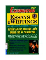Collection of new examination essays  writings 1