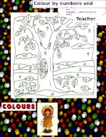 55993 colour by numbers and speaking activity