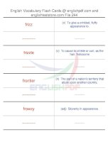 TOEFL IBT vocabulary flash cards244