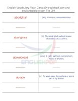 TOEFL IBT vocabulary flash cards04