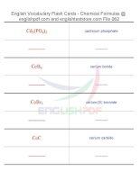 Vocabulary flash cards   chemical formulas62