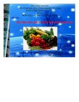 Đề tài xác định dư lượng thuốc trừ sâu trong rau