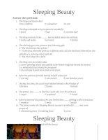 4314 sleeping beauty