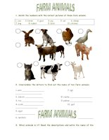 42185 farm animals matching unscrambling and descriptions