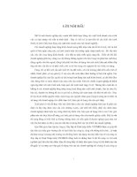 CHUYÊN đề GIẢI PHÁP NÂNG CAO HIỆU QUẢ sử DỤNG vốn tại CÔNG TY xây lắp và XUẤT NHẬP KHẨU VICIMEX TỔNG CÔNG TY xây DỰNG XUẤT NHẬP KHẨU VIỆT NAM VINACONEX
