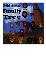 38187 simba family tree