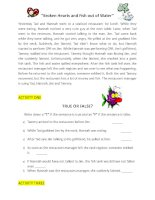 28425 adverbials activity