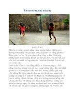 Văn tả cơn mưa rào mùa hạ