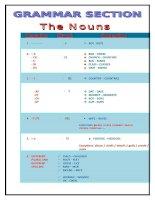 14555 grammar section  nouns