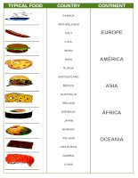 17471 food of the world
