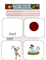 11511 cvc words flashcards