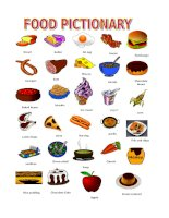38524 food pictionary