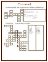 38533 crossword  opposite