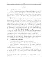 Quy định pháp luật về xác lập quyền sở hữu công nghiệp đối với nhãn hiệu tại việt nam