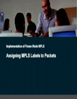 mpls and bgp lab guide