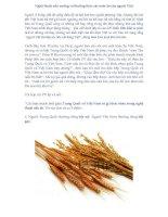 Nghệ thuật nấu nướng và thưởng thức các món ăn của người Việt