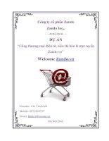 Lập kế hoạch kinh doanh khởi nghiệp dự án thương mại điện tử kinh doanh Online