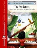 The five senses   EngageNY