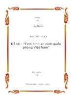 Bài tiểu luận về tình hình an ninh quốc phòng ở Việt Nam