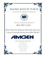 chiến lược kinh doanh quốc tế của công ty amgen ( dược phẩm) cô quách thị bửu châu