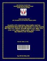 nghiên cứu phương pháp biên nhúng (immersed boundary method) và ứng dụng để tìm các thông số khí động lực học của cầu cáp treo trong điều kiện thiếu hệ thống thí nghiệm