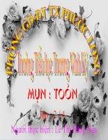 BAI TRINH CHIEU MON TOAN LOP 2