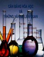tiểu luận môn học hóa đại cương   cân bằng hóa học