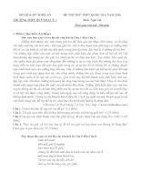TỔNG hợp đề THI THỬ THPT QUỐC GIA MÔN VĂN 2016 1 và HƯỚNG DẪN
