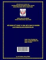 Sử dụng kỹ thuật vi gel để vi bao vi khuẩn lactobacillus acidophilus