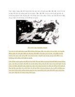những hiểu biết cơ bản về lỗ đen vũ trụ
