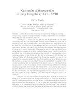 Các nguồn và thương phẩm ở đàng trong thế kỷ XVI – XVIII