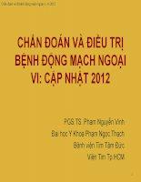 cd va dt benh dong mach ngoai vi cn 2012