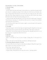 Soạn bài lớp 11: Lai Tân